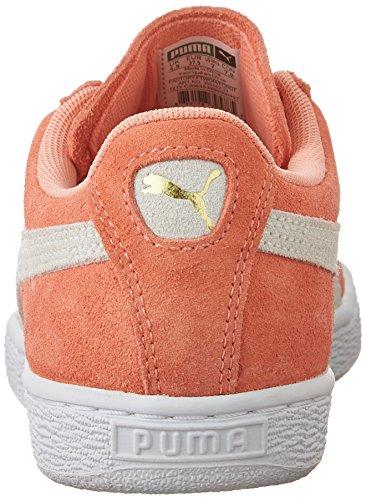 Puma Suede Classic  Damen Sneakers Desert Flower/White
