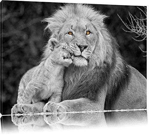 cadre photo de lion le classement des meilleurs de novembre 2018 zabeo. Black Bedroom Furniture Sets. Home Design Ideas