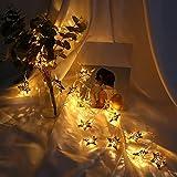 Prevently Lichterkette Strombetrieben,Stern Lichterkette Batterienbetrieben mit LED Lichterkette 1,5 m 10 Lichter für Party Weihnachten Hochzeit Feier Garten Terrasse Zimmerdekoration (Golden)
