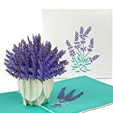 PaperCrush® Pop-Up Karte Blumen Lavendel - 3D Blumenkarte für Freundin, Mutter, Oma (Geburtstagskarte, Dankeschön, Gute Besserung) - Handgemachte Glückwunschkarte mit Blumenmotiv
