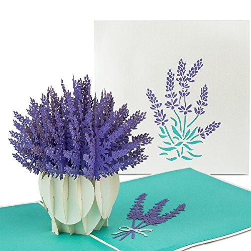 PaperCrush® Pop-Up Karte Blumen Lavendel - 3D Blumenkarte für beste Freundin oder Mutter (Geburtstagskarte, Runder Geburtstag, Dankeskarte, Gute Besserung) - Handgemachte Popup Karte mit Blumenmotiv