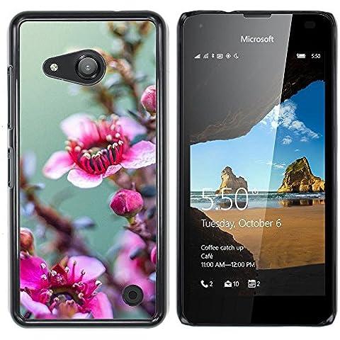Loire Buntes Gedrucktes Harte Schutzschicht Zurück Deckung Haut Shell NOKIA Lumia 550 ( Stock )
