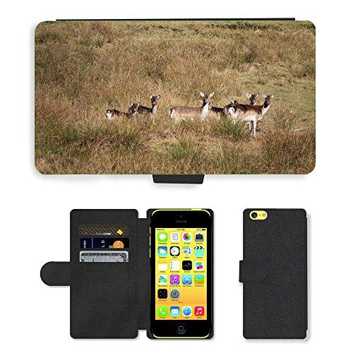 Just Mobile pour Hot Style Téléphone portable étui portefeuille en cuir PU avec fente pour carte//m00138839Roe Deer Animaux Sauvages Mammifère modèle//Apple iPhone 5C