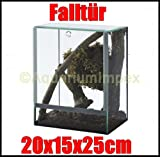 Glas Terrarium Glasterrarium 20x15x25 20 15 25 Falltür