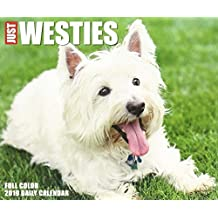 Just Westies 2019 Box Calendar (Dog Breed Calendar)