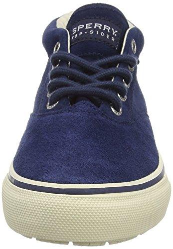 Sperry Top-Sider Striper Chukka Suede, Sneakers Hautes homme Bleu (navy)