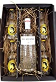 Gin Tonic Set / Geschenktset - The Botanist Islay Dry Gin 70cl (46% Vol) + 4x Thomas Henry Tonic Water 200ml