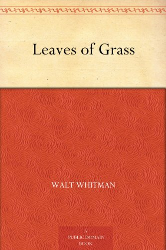 essay questions for walt whitman