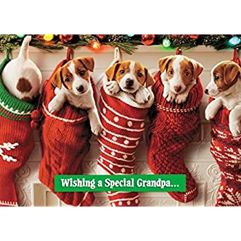 Avanti Special Grandpa Funny Christmas Greeting Card Humour Cards