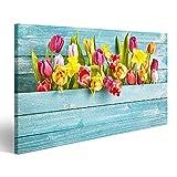 Quadro moderno Bordo a tulipano con spazio copia su sfondo di legno turchese per concetti di design in primavera stagionale Stampa su tela Quadri x salotto cucina mobili ufficio casa RTG