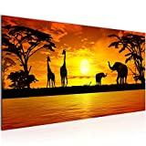 Bilder Afrika Sonnenuntergang Wandbild Vlies - Leinwand Bild XXL Format Wandbilder Wohnzimmer Wohnung Deko Kunstdrucke Orang 1 Teilig - MADE IN GERMANY - Fertig zum Aufhängen 000212a