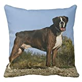 Boxer Dog driving a Car Christmas Tree on top throw Pillow case New Style, m-10, 18*18