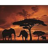 Elefanten 5D Diamant Malen Kit von Zahlen Kristall Strass Teilweise Bereich Stickerei Kreuzstich DIY Art Craft Home Wand Decor (30x 25cm)