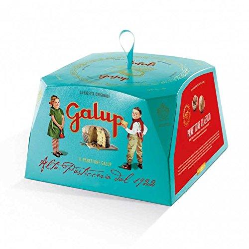 Panettone classico gran galup incarto turchese 1kg prodotto artigianale
