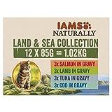 Iams Naturally Katze Land & Sea Collection Multibox groߟ