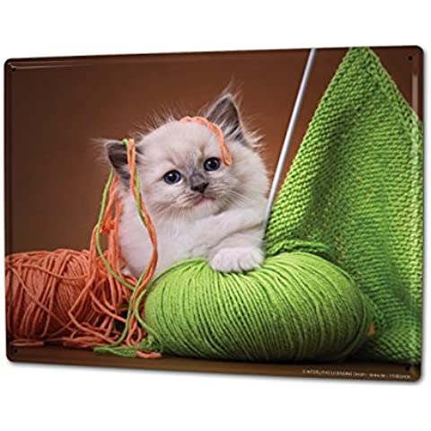 Cartel Letrero de Chapa XXL Práctica Veterinaria Hilos de la aguja de tejer Kitten