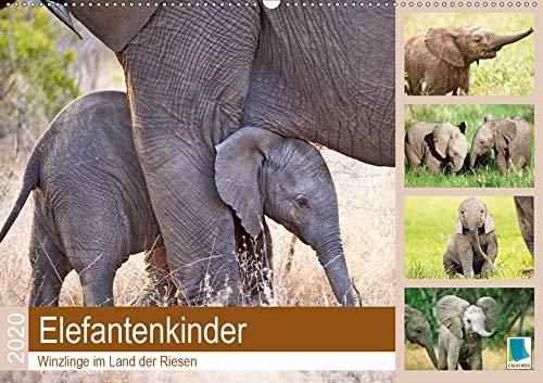 Elefantenkinder: Winzlinge im Land der Riesen (Wandkalender 2020 DIN A2 quer): Afrikanische Elefantenbabys spielen im Schutz Ihrer Herde (Monatskalender, 14 Seiten ) (CALVENDO Tiere) -