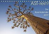 Astrein! - Der Baumkalender 2019 (Tischkalender 2019 DIN A5 quer): Bäume aus verschiedenen Perspektiven in 12 hochwertigen Fotografien (Monatskalender, 14 Seiten ) (CALVENDO Natur)