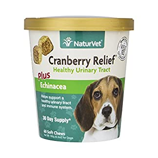 NaturVet CRANBERRY RELIEF + Echinacea Soft Chew Dogs Urinary Tract (CUP) – 60 ct 51 ru5CgX3L