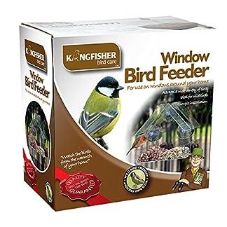 King Fisher Window Bird Feeder 14