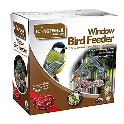 King Fisher Window Bird Feeder 1