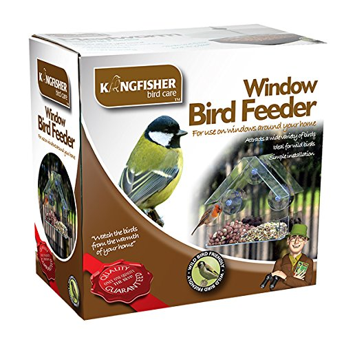 King Fisher Window Bird Feeder Test