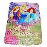 TE-Trend Disney Fleece Decke Kuscheldecke Princess 100x150 cm