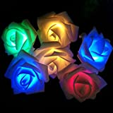 #6: PragAart Rose Flower LED String Light for Wedding, Garden and Festival Decoration - 2.5 Meter Length with 20 LED Roses, Multicolor