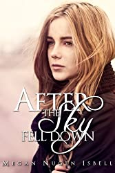 After the Sky Fell Down (English Edition)