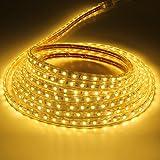 Liqoo 5M Tiras de Luz LED Strip Impermeable 40W 220V Blanco Cáldo 3000K Longitud DIY 300leds No...