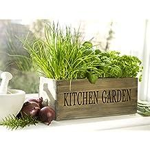 Küchengarten Kräuterkisten Kräutergarten Pflanzgefäß aus Holz