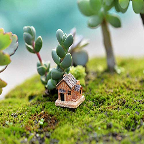 DUNDUNGUOJI Other Arts/Crafts Mini Small House Cottages DIY Toys Crafts Figure Moss Terrarium Fairy Garden Ornament Landscape Decor Random Color Dollhouse 2 * 2 * 1.7 cm/Zufällige -