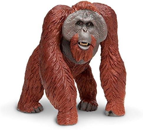 Safari 112289 - Figurine - Orang Outang de Borneo   Dans Un Style élégant