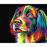 [Assemble Wooden Framed] Diy Oil Painting by number over 40 pictures for select Paint By Number Home Wall Pic with DIY assemble wooden frame for adults and children for value gift-Colorful Dog MAETEK