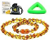 Collier Ambre 33cm. - 100% Plus Haute Qualité Certifié l'Ambre la Baltique Authentique Collier Perles de plus gros!! / Garantie de Remboursement! (Cognac)