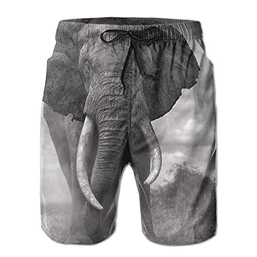 yting Gran pantalón de natación para Elefantes Pantalones Cortos para Hombres, Deportes...