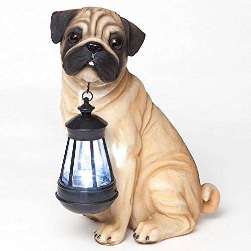 awn Mops Solar Laterne, solarbetrieben, Garten Laterne-Kunstharz Hund Skulptur mit LED Licht-Outdoor Beleuchtung und Dekor ()