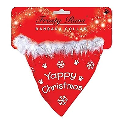 Small Dog 'Yappy Christmas' Bandana Collar - Red
