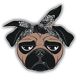 Pegatina de Vinilo Funny Pug Dog