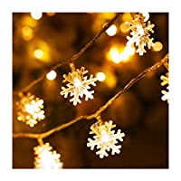 Millya 40 LED White Snowflake Battery Powered Indoor Fairy String Light, 5M