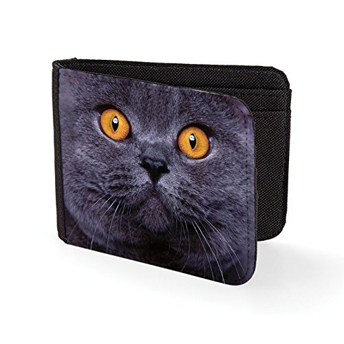 Printed Mens Wallet & Card Holder Shorthair Cat Mens Travel Wallets (Cat-schein)