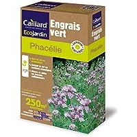 Caillard PFCM18919 Pack de Graines Phacelie 250 m²