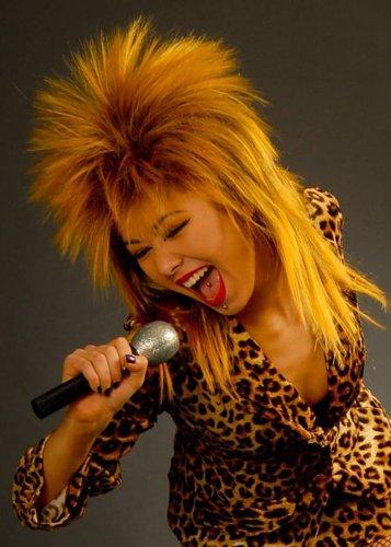 80s Tina Turner Art-Felsen-Diva-Perücke