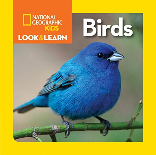 national-geographic-kids-look-and-learn-birds-ngk-look-learn