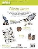 memo Wissen Entdecken - Greifvögel: Das Buch mit Poster! - Jemima Parry-Jones