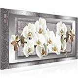 Bilder Blumen Orchidee Wandbild Vlies - Leinwand Bild XXL Format Wandbilder Wohnzimmer Wohnung Deko Kunstdrucke Grau 1 Teilig - MADE IN GERMANY - Fertig zum Aufhängen 205412b