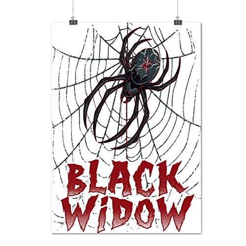 Schwarz Witwe Spinne Angst Das Netz Mattes/Glänzende Plakat A3 (42cm x 30cm) | (Witwe Beerdigung Schwarze Kostüm)