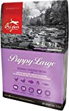 Orijen Hundefutter Puppy Large 13 kg