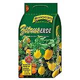 Zitruserde für Zitronen- und Zitruspflanzen von Bodengold Premium 5 Liter