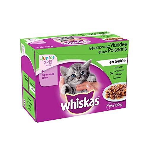 whiskas-fraicheur-en-gelee-pour-chaton-12-x-100-g-4-sachets-lot-de-4